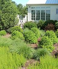 Starbuck's Landscaping :: Services